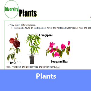 Science Note - About plants